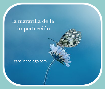la maravilla de la imperfeccion